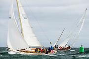 Gyre sailing in the Opera House Cup regatta.