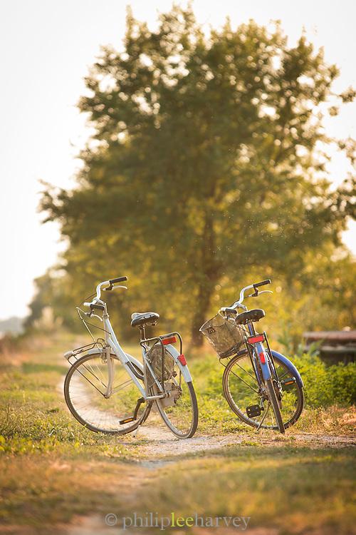 Bicycles on the coastal path, Island of Sant'Erasmo. Venice, Italy, Europe