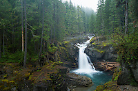 Silver Falls on the Ohanapecosh River in Mt. Rainier National Park, WA.