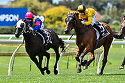 Lisa Allpress leads Eilish McCall (Iskander) during Race 3, Race in Sydney with Go Racing.<br /> Vodafone Derby Day at Ellerslie Race Course, Auckland on Sunday 7th March 2021 during lockdown level 2.<br /> Copyright photo: Alan Lee / www.photosport.nz