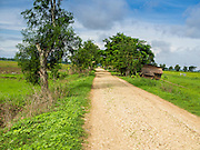 06 JUNE 2014 - IRRAWADDY DELTA,  AYEYARWADY REGION, MYANMAR:  A dirt road in the Irrawaddy Delta (or Ayeyarwady Delta) in Myanmar. The region is Myanmar's largest rice producer, so its infrastructure of road transportation has been greatly developed during the 1990s and 2000s. Two thirds of the total arable land is under rice cultivation with a yield of about 2,000-2,500 kg per hectare. FIshing and aquaculture are also important economically. Because of the number of rivers and canals that crisscross the Delta, steamship service is widely available.  PHOTO BY JACK KURTZ