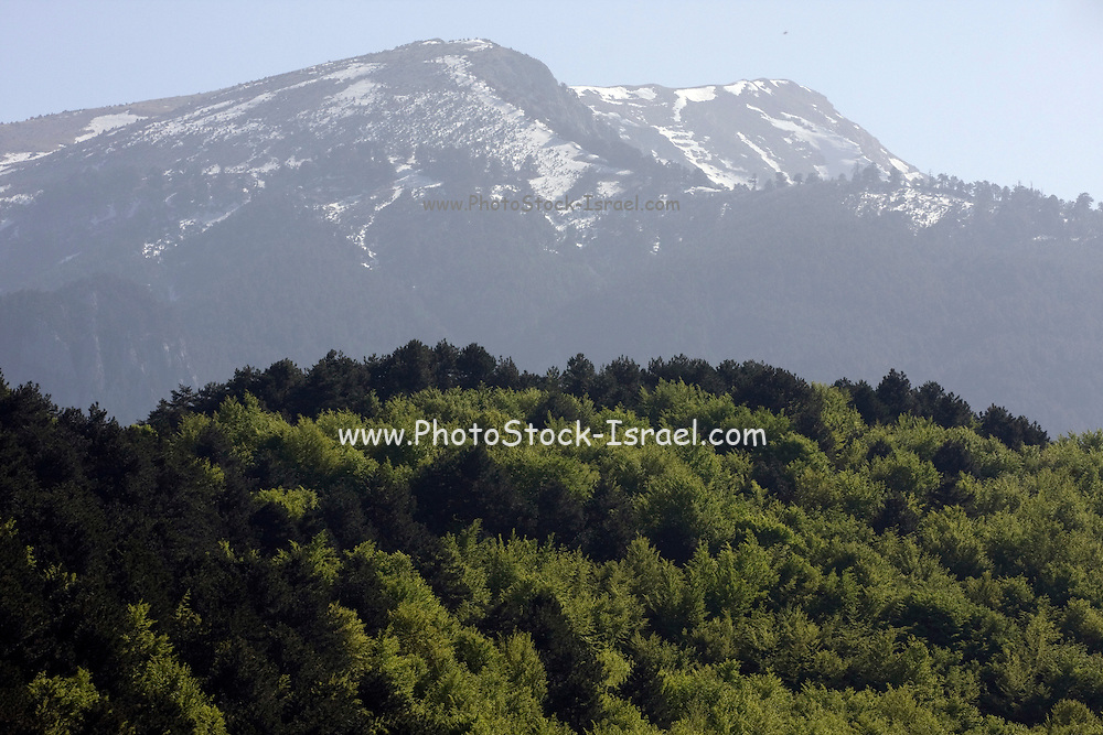 Greece, Macedonia, Mount Olympus National Park snow on the mountain top