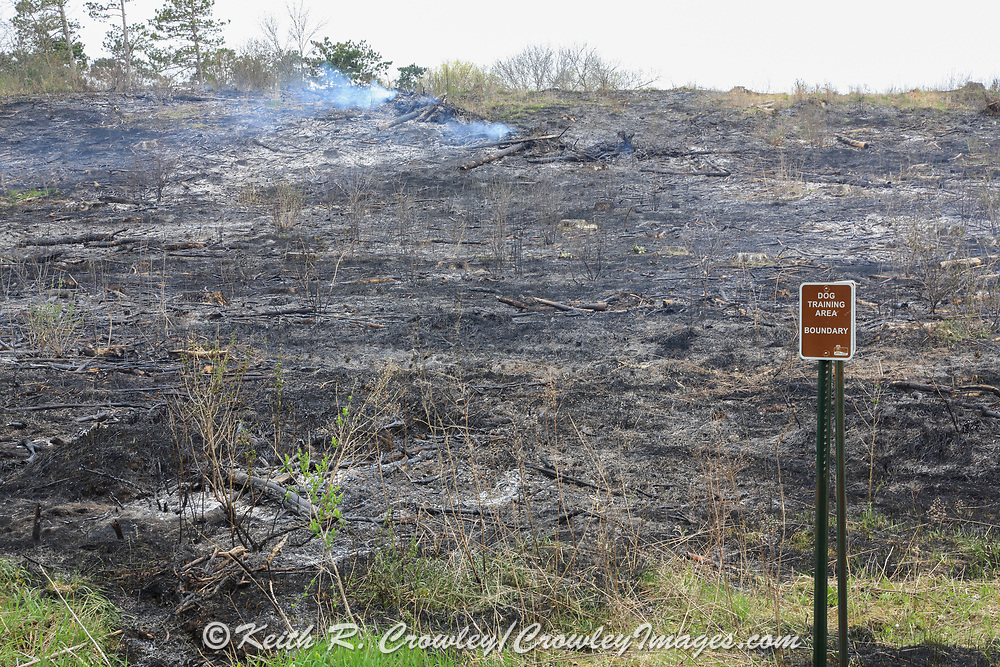 The immediate results of a controlled burn on the Three Lakes Wildlife Area near New Richmond, Wisconsin, conducted by the Wisconsin Department of Natural Resources.