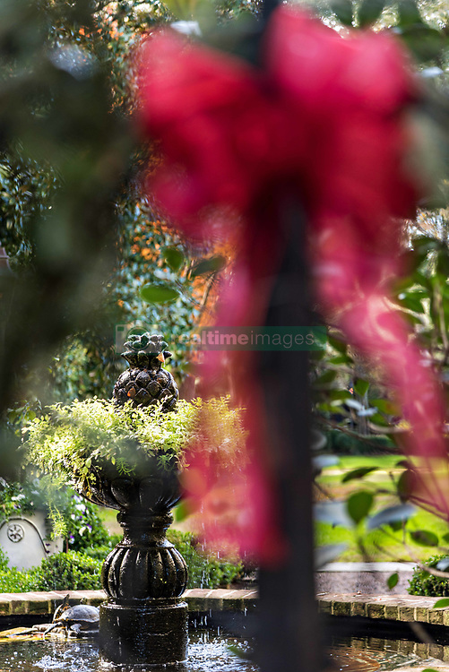 December 21, 2017 - Charleston, South Carolina, United States of America - A garden fountain framed by a Christmas bow on the wrought iron fence of a historic home on Legare Street in Charleston, SC. (Credit Image: © Richard Ellis via ZUMA Wire)