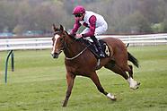 Nottingham Races Horse Racing 270421