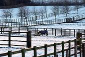 2014_02_29_Cheshire_SSI