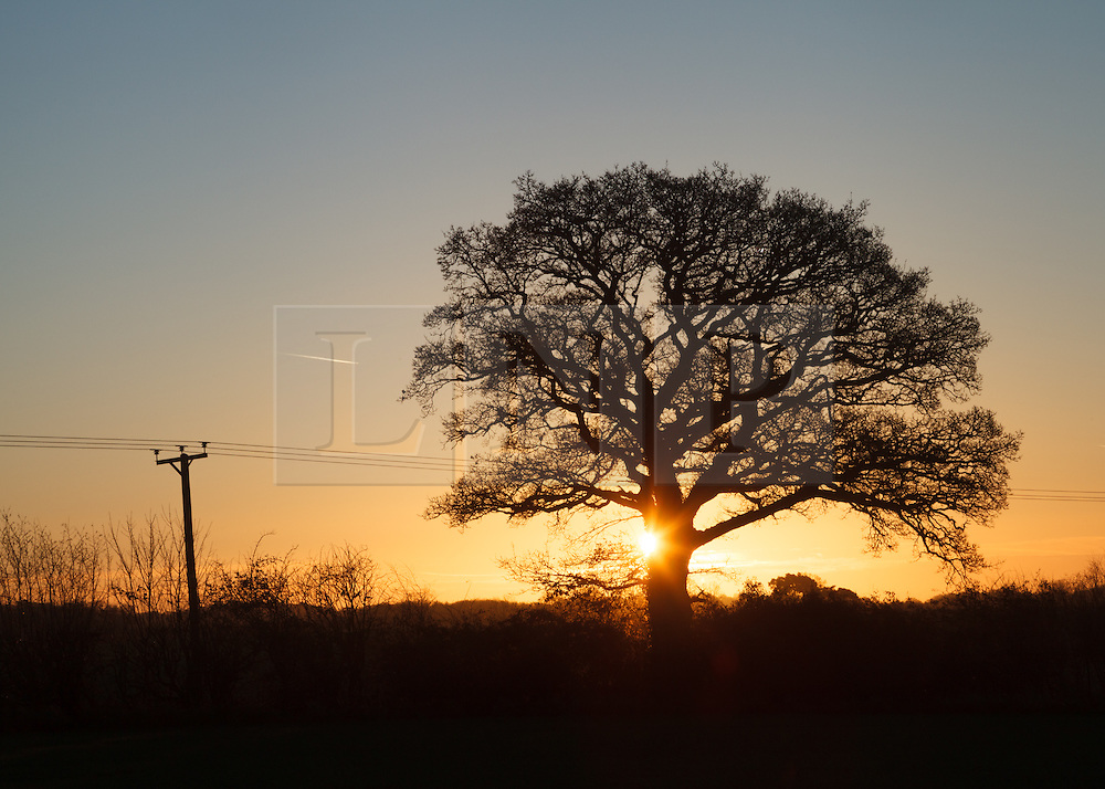 © Licensed to London News Pictures. 11/01/2014. Lasham, Hampshire, UK. Sunrise at Lasham in Hampshire as the weather becomes more settled in the South of England, with clear skies forecast for today, 11th January 2014. Photo credit : Rob Arnold/LNP