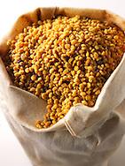 Pollen Grains - stock photos