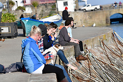 © Licensed to London News Pictures. 22/03/2020. St. Ives, UK. Eating pasties on the wharf in St IvesBusiness in the holiday town of St Ives has shut its doors to visitors in response to the Corona Virus pandemic. Photo credit: MARK HEMSWORTH/LNP