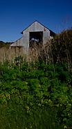 Moss Landing | Elkhorn Slough