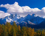 """East and West Twin Peaks of the Chugach Range covered with autumn """"Termination Dust and golden balsam poplars along the Knik River, Alaska."""