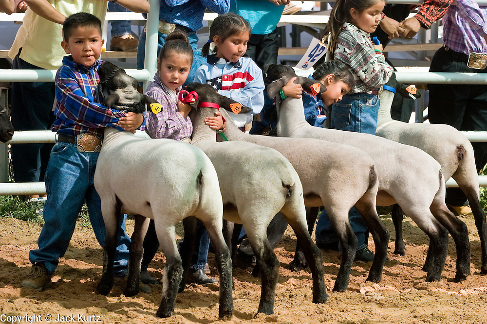 09 SEPTEMBER 2004 - WINDOW ROCK, AZ: Navajo children show their market lambs during the 58th annual Navajo Nation Fair in Window Rock, AZ. The Navajo Nation Fair is the largest annual event in Window Rock, the capitol of the Navajo Nation, the largest Indian reservation in the US. The Navajo Nation Fair is one of the largest Native American events in the United States and features traditional Navajo events, like fry bread making contests, pow-wows and an all Indian rodeo.  PHOTO BY JACK KURTZ