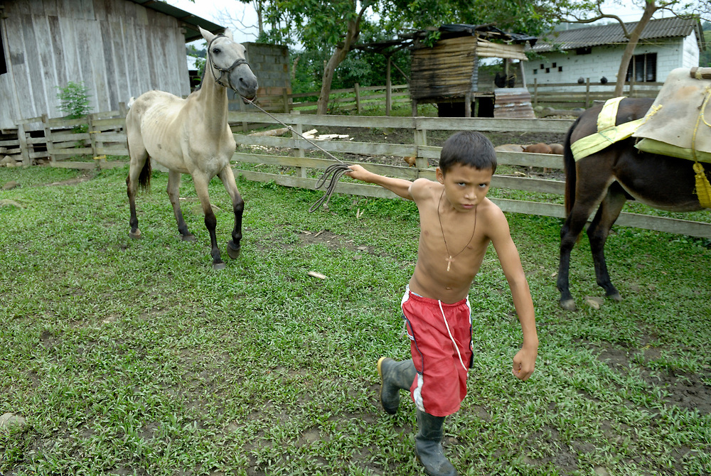 A boy leads a horse in the peace community of San Jose de Apartado, Colombia. In 1997, 1400 war-weary peasants declared they would no longer cooperate with any of the armed parties in the hemisphere's longest-running war. They paid a heavy price for their witness; more than 200 members of the community have been killed. In 2013, two army generals were indicted for a 2005 massacre in the community, and on December 10, 2013, Colombian President Juan Manuel Santos Calderon, in the name of the state, publicly asked the community for forgiveness.