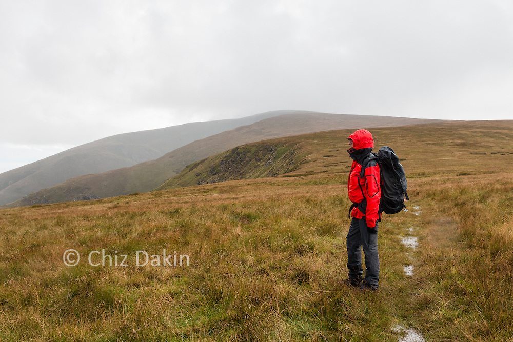 Looking along the N ridge of Blackcombe