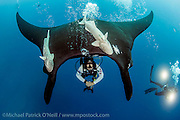 "A Giant Pacific Manta Ray, Manta birostris, hovers immediately over a scuba diver and enjoys the bubbles coming from his scuba equipment caressing her stomach. Photo taken at ""The Boiler"", a seamount in the remote Revillagigedo Archipelago, roughly 220 miles south / southwest of Cabo San Lucas, Mexico. This is the only location in the world where Manta Rays are known to exhibit this behavior."