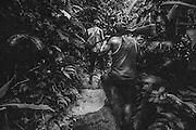 French guiana, Approuague.<br /> <br /> Zone clandestine bresilienne proche de la crique Ipoussing. Situee au bord de l'approuague, les pirogues bresiliennes assurent le ravitaillement de marchandises et des hommes depuis le bresil en passant par Regina. Un reseau de pistes et de layons relie les differents sites d'orpaillage.