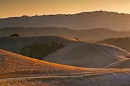 Hills at sunset, Briones Regional Park, Contra Costa County, California