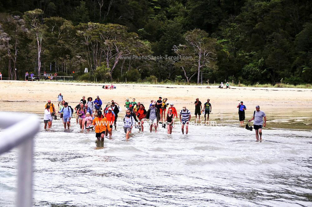 New Zealand, South Island, Nelson, Bark Bay Abel Tasman National Park Sea shuttle