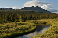 scenic photograph of a small tundra stream with mountain backdrop, interior Alaska