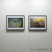 Front vetrine of Gallery 1401 at the Sol Mednick Gallery in Philadelphia at the University Of The Arts in 2012.