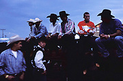 """Ranch hands, """"Cowboys"""" await their moment to enter the arena on the back of a bull or horse, to show off their skills."""