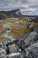 Skierffe mountain from Nammajs, Sarek National Park, Laponia World Heritage Site, Sweden