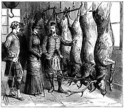 Duke of Fife's game larder, 1881. The Prince and Princess of Wales (Edward VII and Queen Alexandra from 1901) being shown the Duke of Fife's game larder during a deerstalking holiday in the Forest of Mar, Scotland. From 'The Graphic'.  (London, 1881).   Wood engraving.