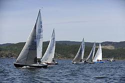 The Clyde Cruising Club's Scottish Series held on Loch Fyne by Tarbert. Day 2 racing in a perfect southerly<br /> <br /> Sonata, Fleet, start