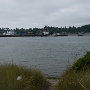 Oregon Coast Aquarium. Newport, Oregon.