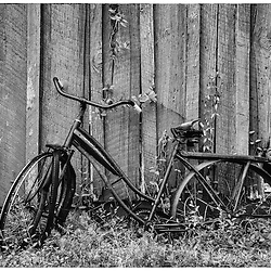 What series of postcards from the past would be complete without a rusty old bike?