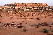 INDIA, RAJASTHAN camel caravan leaving the 11th century city of Jaisalmer in the Great Thar Desert at dusk
