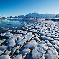 Frozen sea ice on beach, Sandbotnen, Ytresand, Flakstadøy, Lofoten Islands, Norway