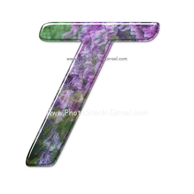 The Capitol Letter T Part of a set of letters, Numbers and symbols of 3D Alphabet made with a floral image on white background