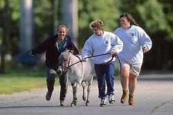 Women Taking Donkey For A Run