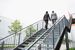 Businessmen ascent ladder of success job Teamwork