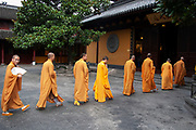 Eight Buddhist monks in ochre yellow robes walk from their quarters to one of their daily prayer sessions at Longhua Temple in the south of Shanghai. This is a working temple where public come to burn incense, offer gifts and to eat. Located on Longhua Road, the temple was first built in 242 AD, during the period of the Three Kingdoms. Longhua Temple is the oldest temple in Shanghai and also the largest at 20,000 square metres including it's grounds. Because of several destructions by the wars, most of the buildings in Longhua Temple were reconstructed during the reign of the Emperor Tongzhi and Guangxu during the Qing Dynasty.
