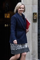 © Licensed to London News Pictures. 14/11/2017. London, UK. Chief Secretary to the Treasury Elizabeth Truss leaves 10 Downing Street after the weekly Cabinet meeting. Photo credit: Rob Pinney/LNP