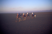 People camel trekking in the Sahara desert near Zagora, Morocco