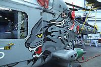 Royal Navy Westland Lynx Royal Naval Air Station Yeovilton Base Tour, UK, 25 November 2010: piQtured Sales: Ian@Piqtured.com +44(0)791 626 2580 (picture by Richard Goldschmidt)