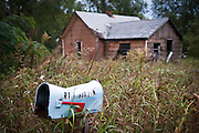 An abandoned house with tall grass and a mailbox. Missoula Photographer