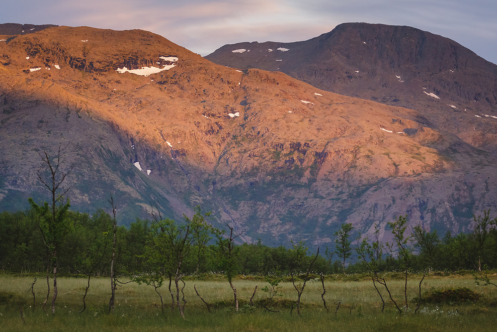 Wetland and Highland | Small bog and hills behind, Norway