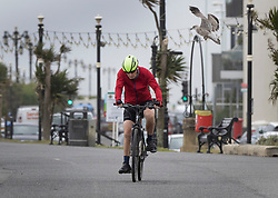 © Licensed to London News Pictures. 30/07/2021. Worthing, UK. A cyclist swerves to avoid a sea gull in high winds on the seafront at Worthing in West Sussex. Parts of the south are feeling the effects of Storm Evert, the first named storm of summer 2021. Photo credit: Peter Macdiarmid/LNP