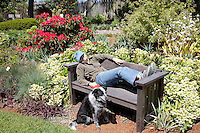 Enjoying the spring bloom at the Mendocino Coast Botanical Gardens located just south of Fort Bragg, California.