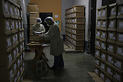 Team members from the National Police Historical Archives file and store documents. On July 5, 2005, the historical archives of the now dissolved National Police were found in an abandoned arms depot in the outskirts of Guatemala City. The discovery of these millions of documents, which were allegedly lost after the 1996 Peace Accords, provide important evidence in the search for the thousands of people who were detained and subsequently disappeared by State security forces during the internal armed conflict (1960-1996). Guatemala City, Guatemala. August 25, 2010.
