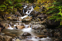Change Creek flows down Mount Washington to the South Fork Snoqualmie River about 30 miles east of Seattle.