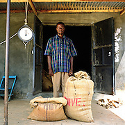 Peter Kangaala, a Kulika trained coffee farmer with the coffee he has produced. Peter cycled 8 km to deliver the beans, which weighed 45kgs, he received 52,200 UG shillings for them.