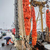 Nederland, Den Helder, 18 maart 2016.<br /> Visafslag bij Den Helder.<br /> De vissersboten die net hun vis afgeleverd hebben worden weer in gereedheid gebracht voor de volgende vaart.<br /> <br /> The Netherlands, Den Helder, 18 march 2016<br /> Fish processing for auction in Den Helder.The fishing boats which have just delivered their fish are getting ready for the next voyage.  <br /> <br /> Foto: Jean-Pierre Jans
