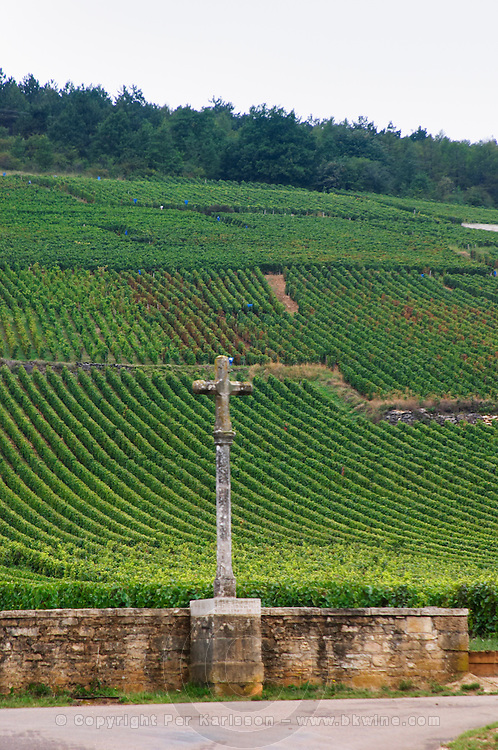 Vineyard. La Romanee Conti Grand Cru with stone cross. Vosne Romanee, Cote de Nuits, d'Or, Burgundy, France