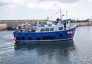 Boat trip to Farne Islands in the harbour, Seahouses, Northumberland, England, UK