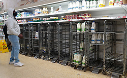 © Licensed to London News Pictures. 03/08/2021. London, UK. A shopper wearing a face covering looks at empty trolleys of fresh milk in Sainsbury's, north London. It has been reported that Britain could face a shortage of milk supplies and these are likely to continue for several months, due to a lack of lorry drivers. UK's biggest milk processor, Arla Foods UK, has said that a number of individual stores have missed deliveries due to the pingdemic. Photo credit: Dinendra Haria/LNP